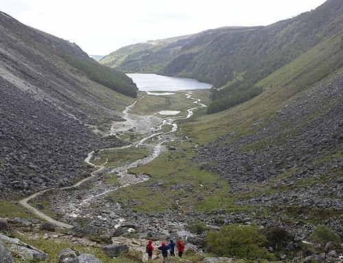 Best Walking Tours in Ireland